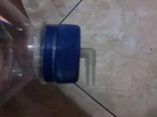 https://tempatbagi.com/membuat-alat-penetas-artemia/